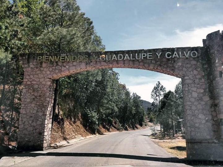 Guadalupe y Calvo 2
